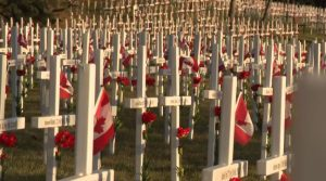 remembrance-day-begins