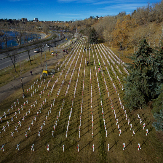 Field of Crosses – A Tribute to those who Served and Died for our ...