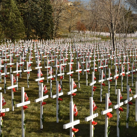 field-of-crosses-11-02-16-square